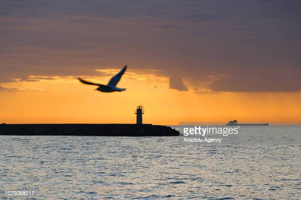 Seagull flies in front of a lighthouse and a ship during sunrise in Turkey's northwestern Tekirdag province on October 14, 2020.