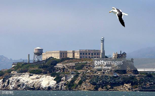 A seagull flies over Alcatraz Federal Penitentiary on Alcatraz Island July 2 2003 in the San Francisco Bay California The park service which manages...