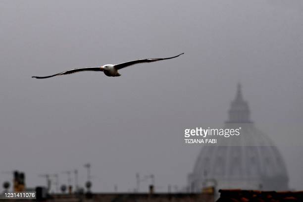 Seagull flies over misty Rome on February 27, 2021 with the dome of The Vatican's St. Peter's basilica in background.
