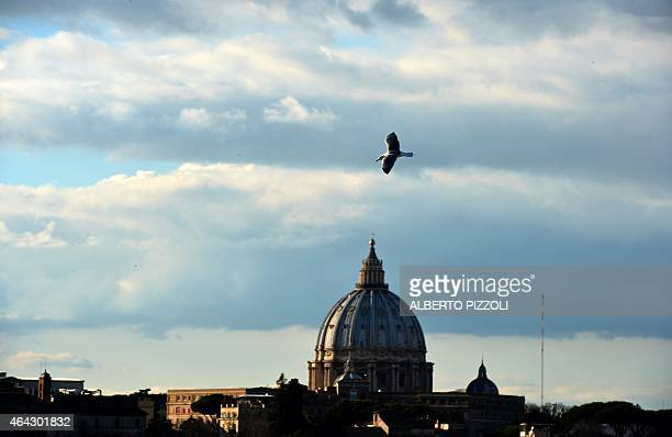 A seagull flies over the city of Rome as the Dome of St Peter's Basilica in the Vatican is seen in the background on February 23 2015 AFP PHOTO /...