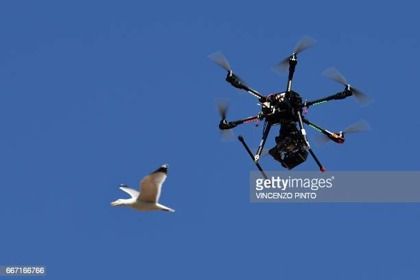 A seagull flies past a drone equipped with a thermal camera used by Carabinieri to securize the area during the meeting of Foreign Affairs Ministers...