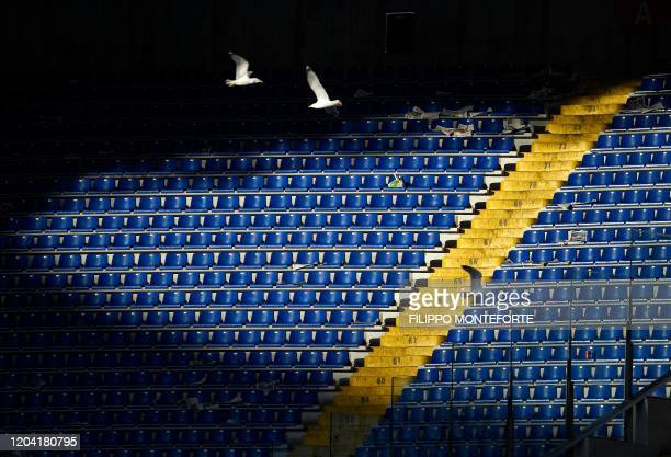 Seagull fly over the tribune at the end of the Serie A football match between Lazio and Bologna at the Olympic Stadium in Rome on February 29, 2020.