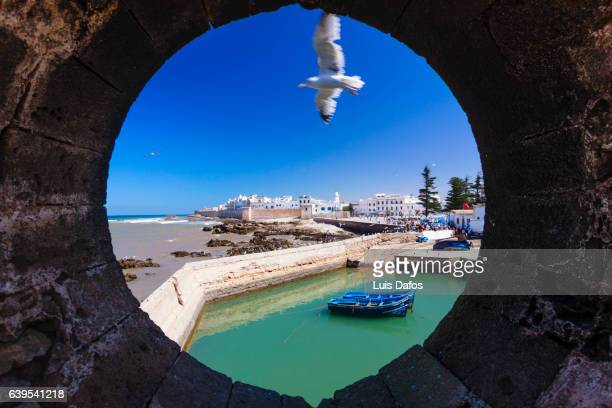 A seagull flying over Essaouira walled medina and pier is seen through a round window at the city walls