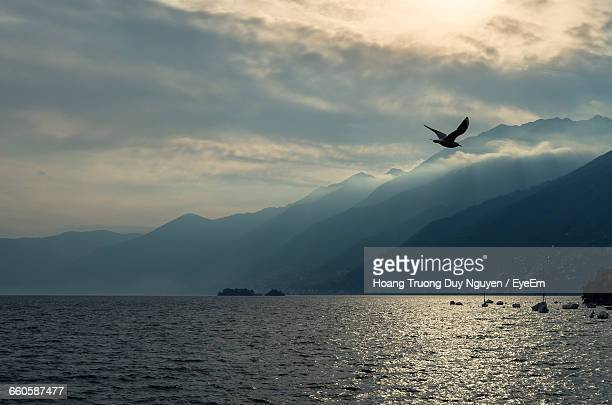 Seagull Flying Over Sea Against Cloudy Sky