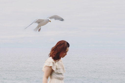 Seagull Flying Over Woman At Beach - gettyimageskorea