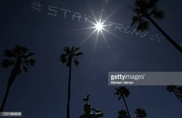 A seagull sits atop the Ben Carlson Memorial Statue as skywriting reading # Stay Stong OC is seen behind it on April 25 2020 in Newport Beach...