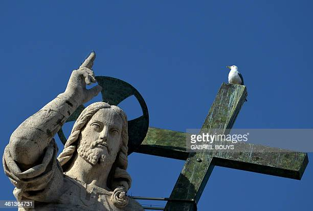 A seagull sits on the cross of the statue of the Christ atop StPeter's Basilica during Pope Francis weekly general audience in St Peter's Square at...