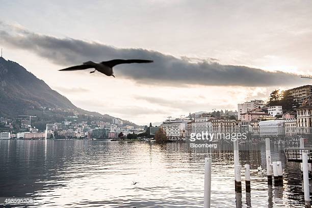 A seagull takes flight as residential apartment properties and retail units sit by the waterfront in Lugano Switzerland on Friday Nov 20 2015 The...