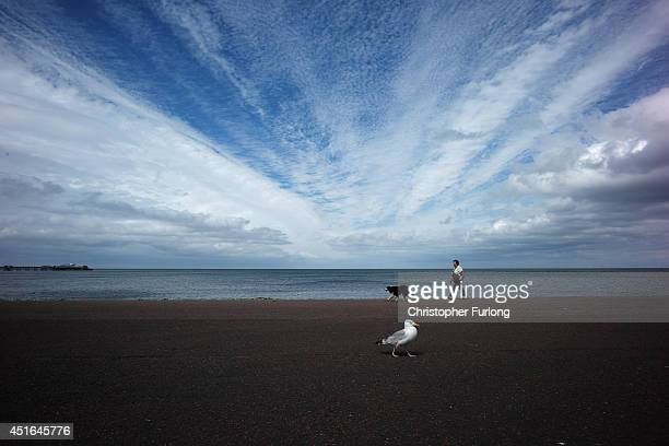 A seagull walks along the promenade as a woman walks her dog on July 3 2014 in Llandudno Wales Llandudno is known as the 'Queen of the Welsh Resorts'...