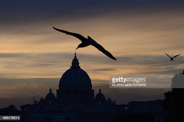 Seagulls are seen in the sky near St Peter's basilica at sunset on November 3 2015 in Rome AFP PHOTO / FILIPPO MONTEFORTE