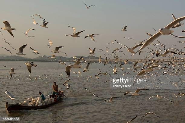 Seagulls fly over a boat on the Salween River in Moulmein where it starts to widen before reaching the Gulf of Martaban in the Andaman Sea