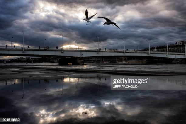Seagulls fly over the Rhone docks in Lyon on January 5 2018 / AFP PHOTO / JEFF PACHOUD