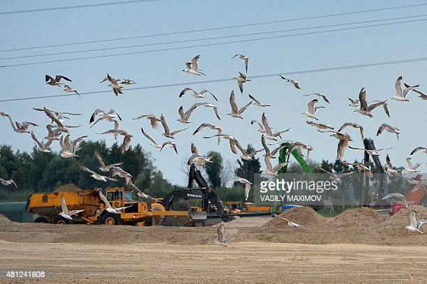 Seagulls fly past the construction site of the football stadium in city of Kaliningrad on July 18 2015 Kaliningrad will host matches during the 2018...