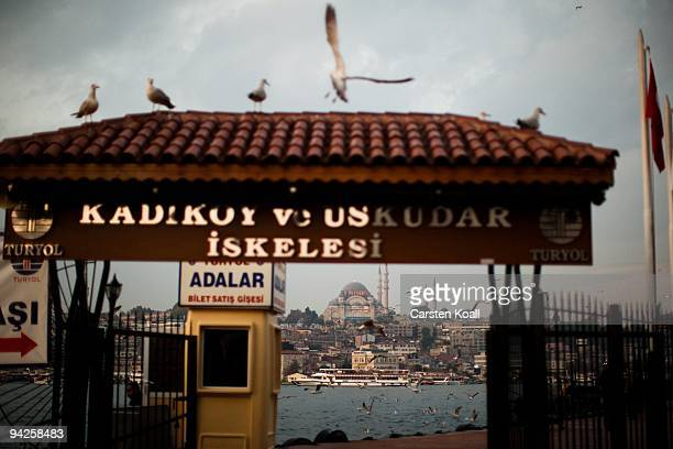 Seagulls flying at the ferry station on October 20, 2009 in the district Kadikoy in Istanbul, Turkey. The Turkish metropolis on the Bosphorus, in the...