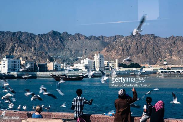 Seagulls Flying By River Against Mountains