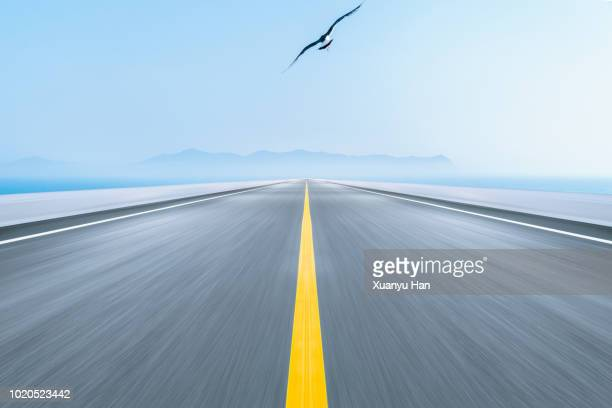 seagulls flying,asphalt road near sea - marca de rua - fotografias e filmes do acervo