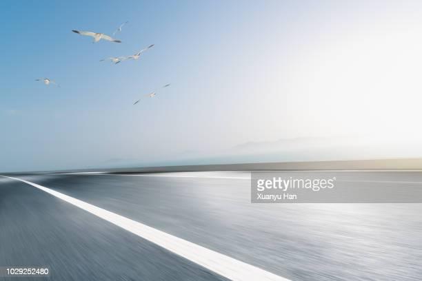 seagulls flying,asphalt road near sea - 高架道路 ストックフォトと画像