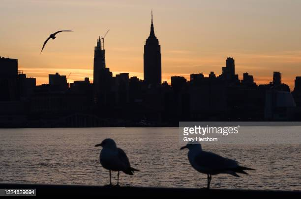 Seagulls stand on a railing as the sun rises behind the Empire State Building in New York City on May 14, 2020 as seen from Hoboken, NJ.