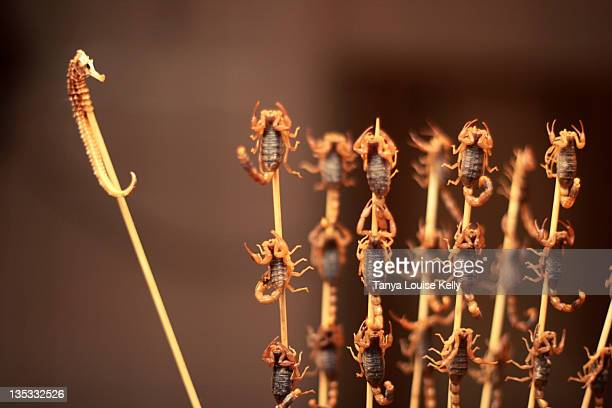Seahorse and scorpions on stick