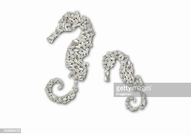 Seahorse family of rice