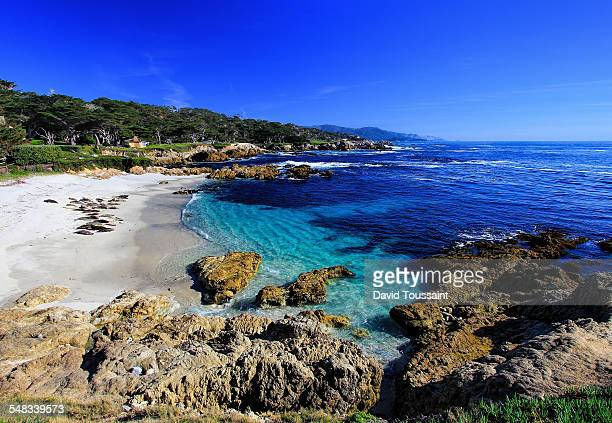 seal beach along 17 mile drive - pebble beach california stock pictures, royalty-free photos & images
