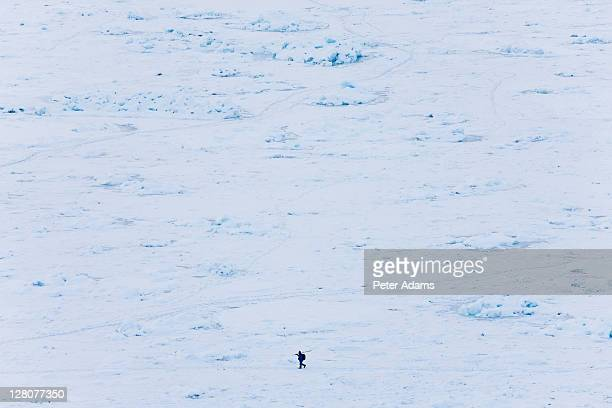 seal hunter, tiniteqilaaq in winter, e. greenland - peter adams stock pictures, royalty-free photos & images