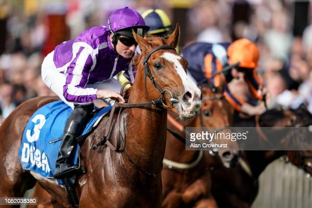Seamie Heffernan riding Norway win The Godolphin Flying Start Zetland Stakes at Newmarket Racecourse on October 13, 2018 in Newmarket, United Kingdom.