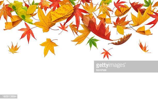 Seamless Falling Autumn Leaves