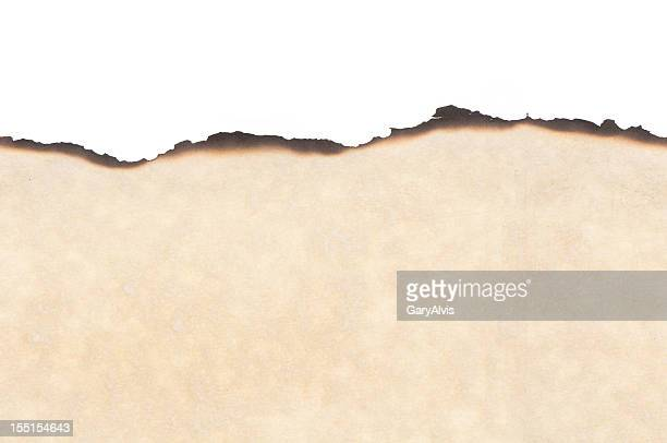 Seamless parchment paper w/burned edges