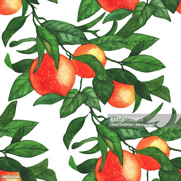 Seamless pattern branch of oranges. Watercolor