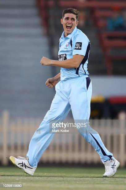 Sean Abbott of the NSW Blues celebrates taking the wicket of Matthew Wade of the Tigers during the JLT One Day Cup match between New South Wales and...