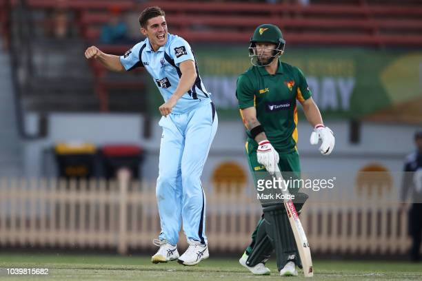 Sean Abbott of the NSW Blues successfully appeals for the wicket of Matthew Wade of the Tigers during the JLT One Day Cup match between New South...