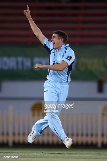 Sean Abbott of the NSW Blues unsuccessfully appeals for the wicket of Jake Doran of the Tigers during the JLT One Day Cup match between New South...