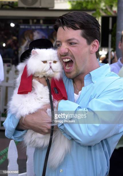 Sean Hayes Mr Tinkles during Cats Dogs Premiere at Mann Village Theatre in Westwood California United States