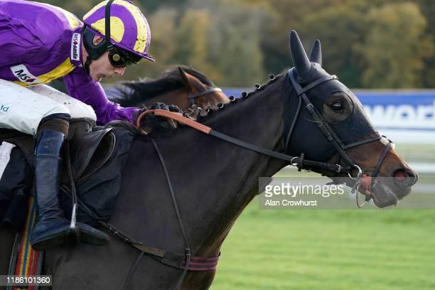 Sean Houlihan riding Zanza clear the last to win The Newbury Bid Conditional Jockeys' Handicap Hurdle at Newbury Racecourse on November 07 2019 in...