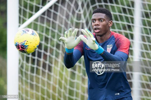 Sean Johnson of the United States makes the save at Dignity Health Sports Park on January 26 2020 in Carson California