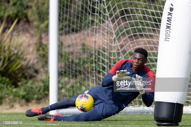 Sean Johnson of the United States makes the save at Dignity Health Sports Park on January 30 2020 in Carson California