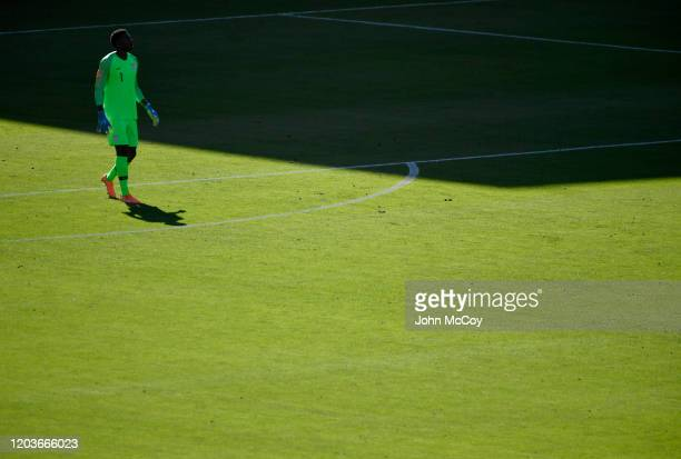 Sean Johnson of the United States walks on the field during a match against Costa Rica at Dignity Health Sports Park on February 1 2020 in Carson...