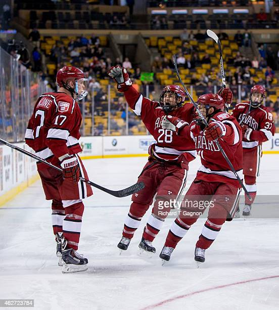 Sean Malone of the Harvard Crimson celebrates his goal with teammates Victor Newell and Kyle Criscuolo during NCAA hockey against the Boston...