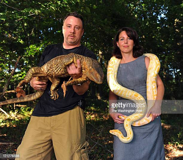 Sean Masciandaro, a reptile specialist and his attorney Antigone Peyton pose for a portrait with Sean's African Black Throat Monitor named D-Bo and...