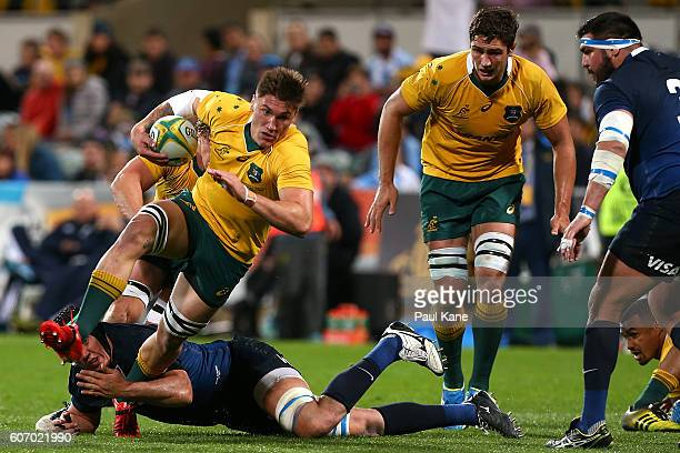 Sean McMahon of Australia breaks from a tackle during the Rugby Championship match between the Australian Wallabies and Argentina at nib Stadium on...