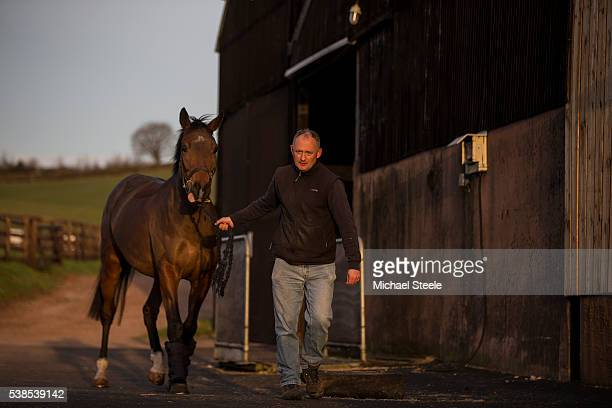 Sean Mulcaire leads a By Polyglot at Sandhill Racing Stables on February 29 2016 in Minehead England Sandhill Racing Stables set in 500 hundred acres...