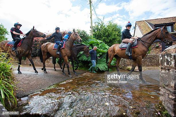 Sean Mulcaire the Travelling Head Lad assists the second lot during walking exercise across a fjord into the village of Withycombe close to Sandhill...