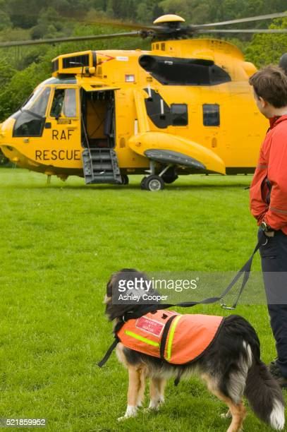 Search and Rescue Dog, Handler and Helicopter