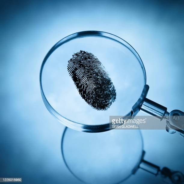 search for evidence - permission concept stock pictures, royalty-free photos & images
