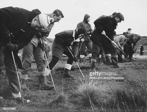 Searchers probing the peat on Saddleworth Moor in the South Pennines in the search for victims of the Moors murderers Ian Brady and Myra Hindley 28th...