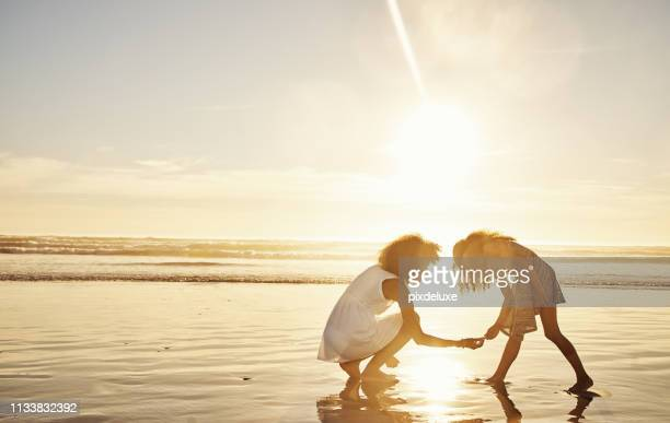 searching for all the seashells - seashell stock pictures, royalty-free photos & images