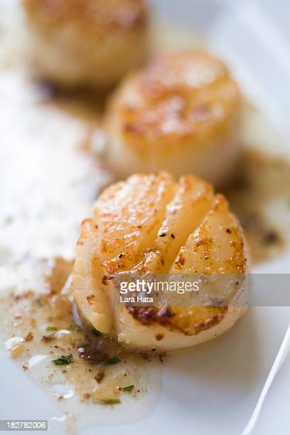 seared scallops with truffle herb butter - seared stock photos and pictures