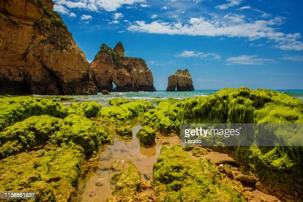 seascape images of beach in alvor portugal - alvor stock pictures, royalty-free photos & images
