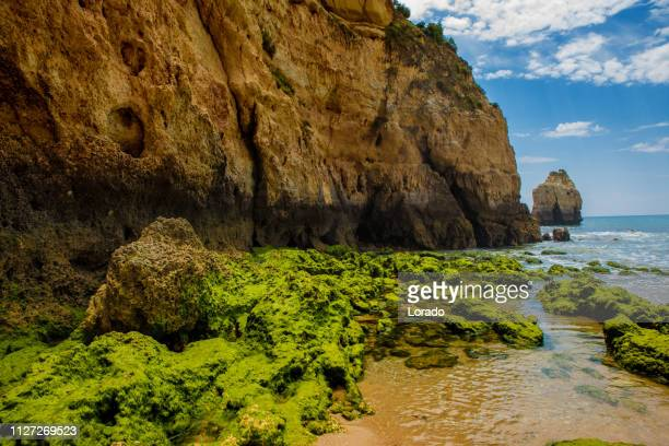 seascape images of beaches and rock formations in alvor portugal in late summer sun - alvor stock pictures, royalty-free photos & images